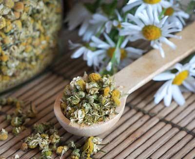 Getrocknete Kamillenblüten – Hausmittel gegen Blähungen